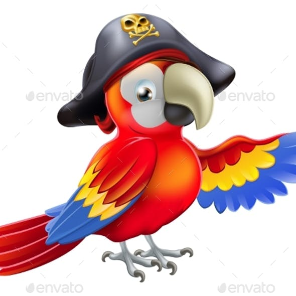 Cartoon Pirate Parrot