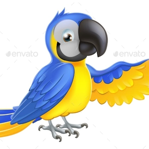 Blue and Yellow Parrot
