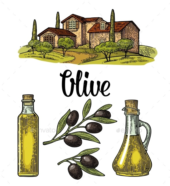Olive Set - Animals Characters