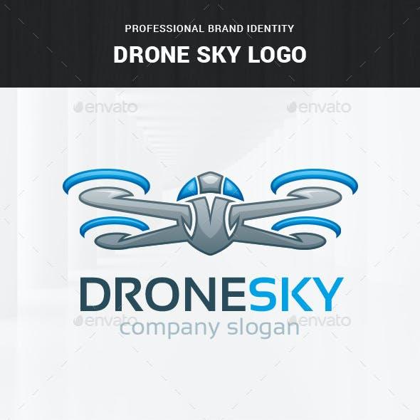 Drone Sky Logo Template