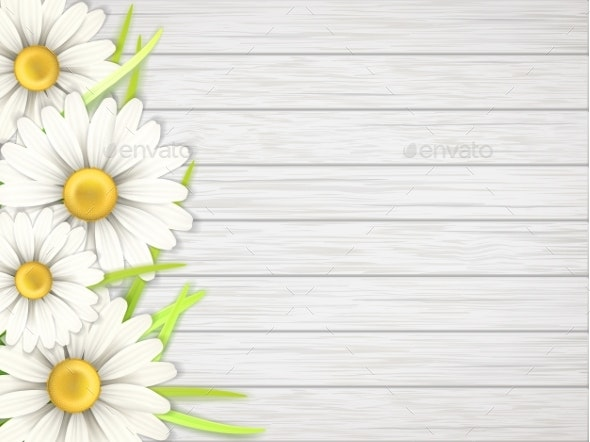 Camomile Flowers on Wooden  Desk - Flowers & Plants Nature