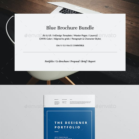 Blue Brochure Bundle