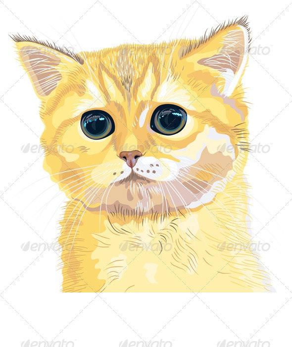 Vector Closeup Sketch Cute Lilac British  Kitten - Animals Characters