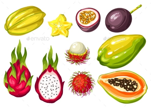 Exotic Tropical Fruits Set. Illustration of Asian - Food Objects