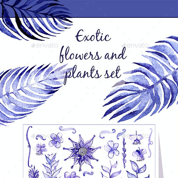 Exotic Flowers And Leaves Set