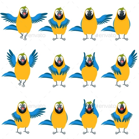 Flat Set of Macaw Icons - Animals Characters
