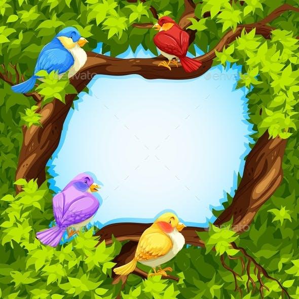 Border Design with Birds on Tree
