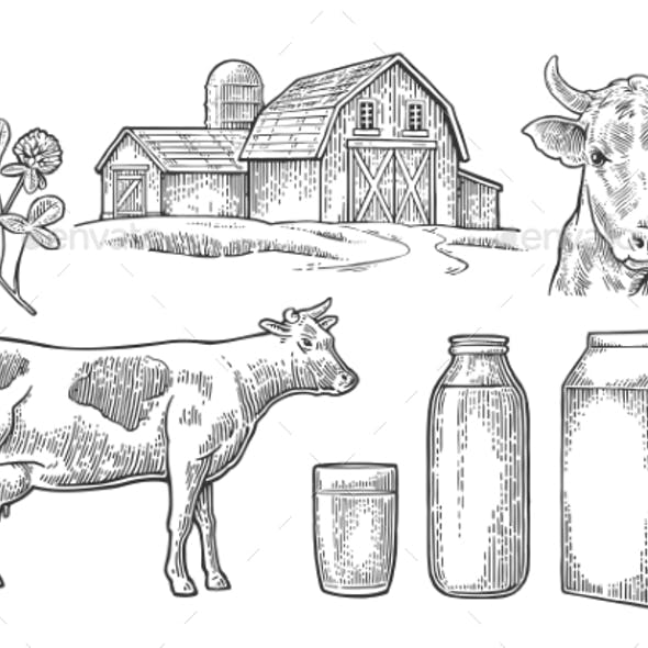 Farm and Milk Set