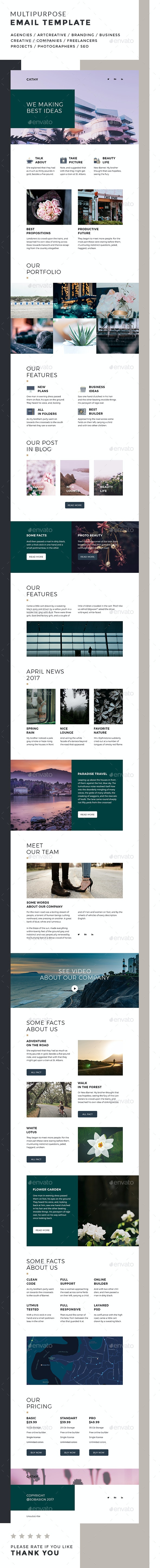 Cathy / Multipurpose Email Template