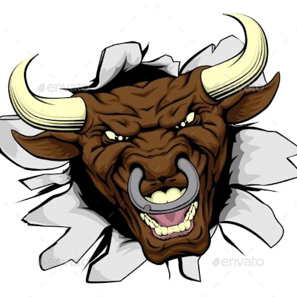 Bull Mascot Breakthrough
