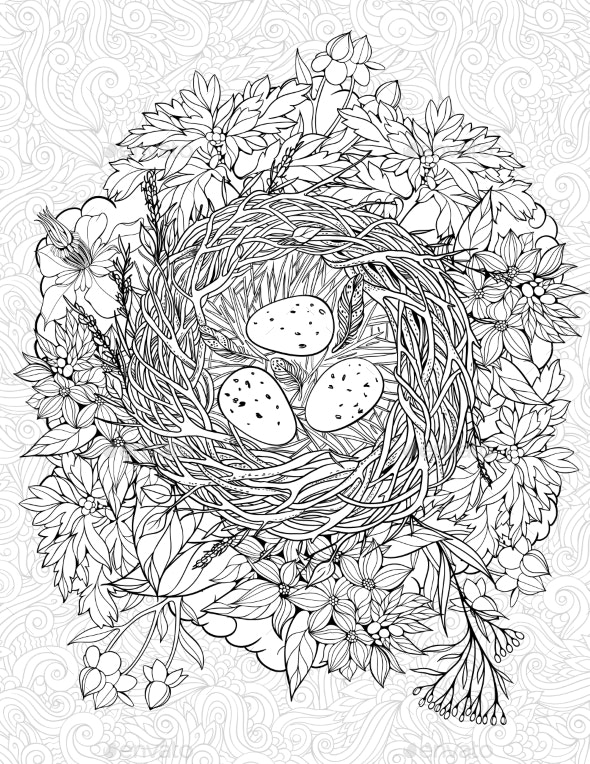 Coloring Page with a Nest and Birds Eggs - Flowers & Plants Nature