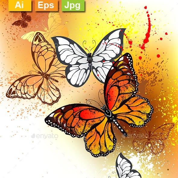 Summer Butterflies Monarchs
