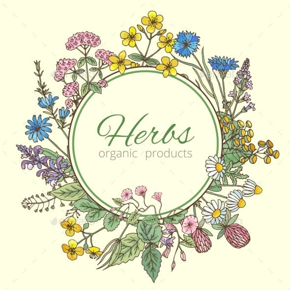 Illustration in Circle Shape of Herbs