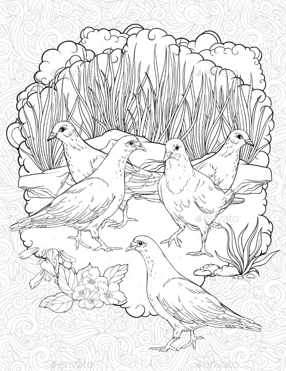 Five Doves Walking in a Grass - Flowers & Plants Nature