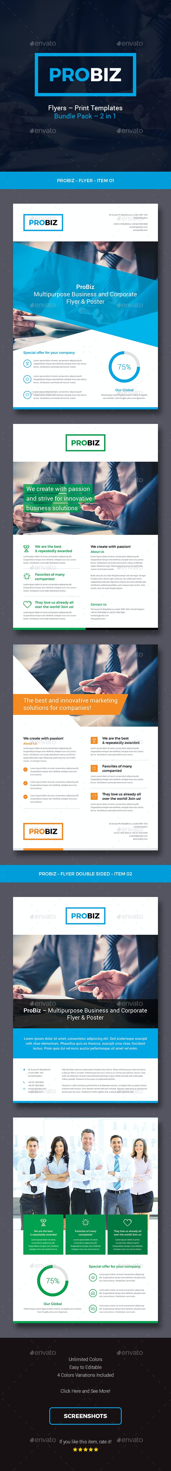 ProBiz – Business and Corporate Flyers Bundle Pack - Corporate Flyers