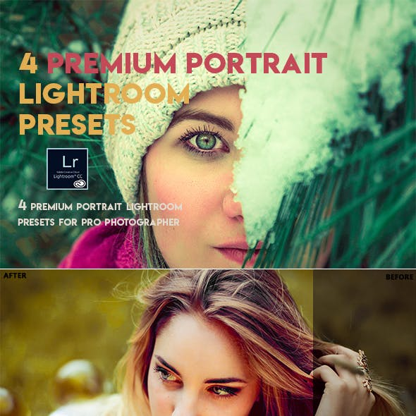 4 Premium Lightroom Presets