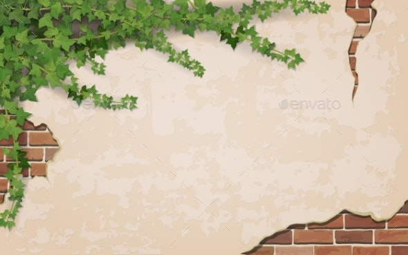 Ivy on Weathered Wall Background - Backgrounds Decorative