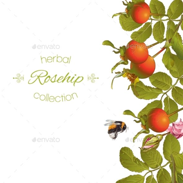 Rose Hip Vertical Banner