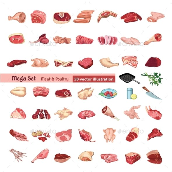 Colored Poultry and Meat Elements Set