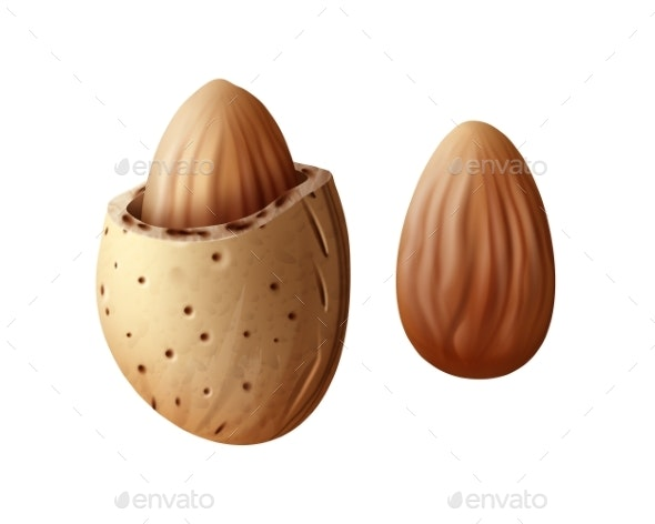 Two Almond Nuts - Food Objects