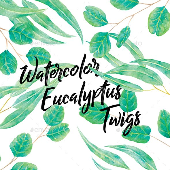 Watercolor Eucalyptus Twigs