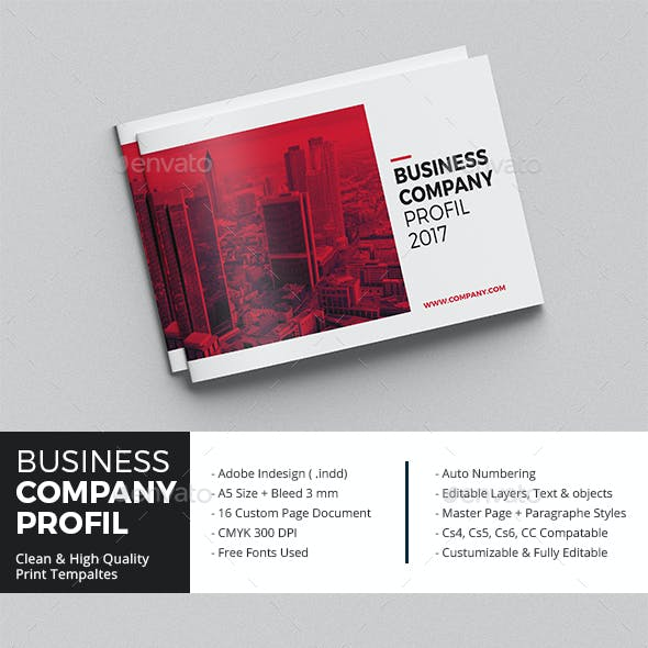Business Company Profil