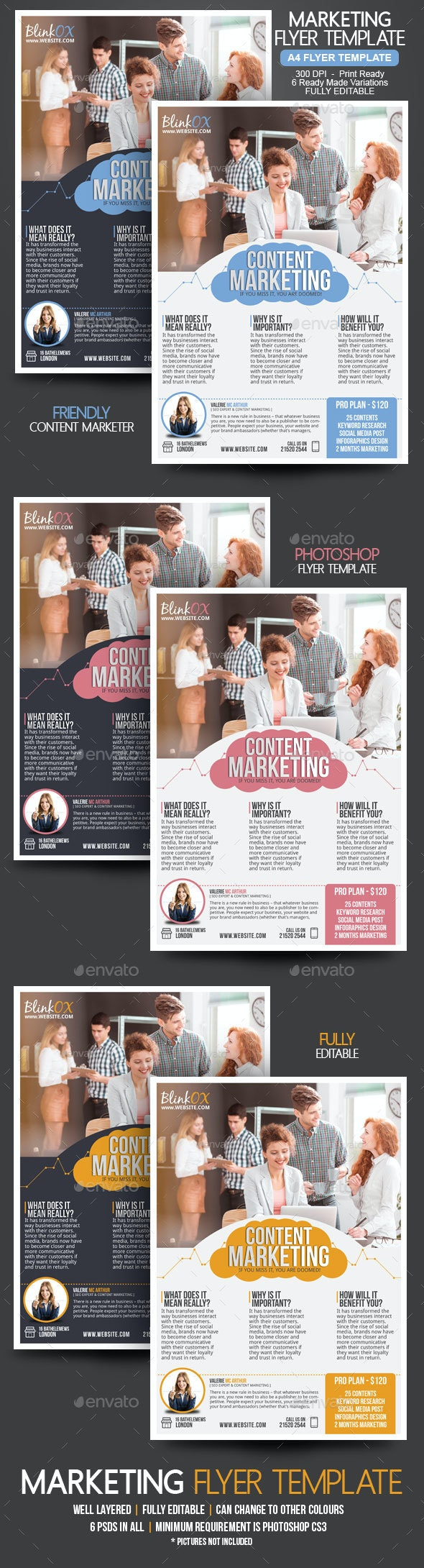 Content Marketing Flyer - Corporate Flyers