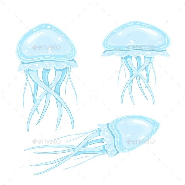 Set of Jellyfishes - Animals Characters