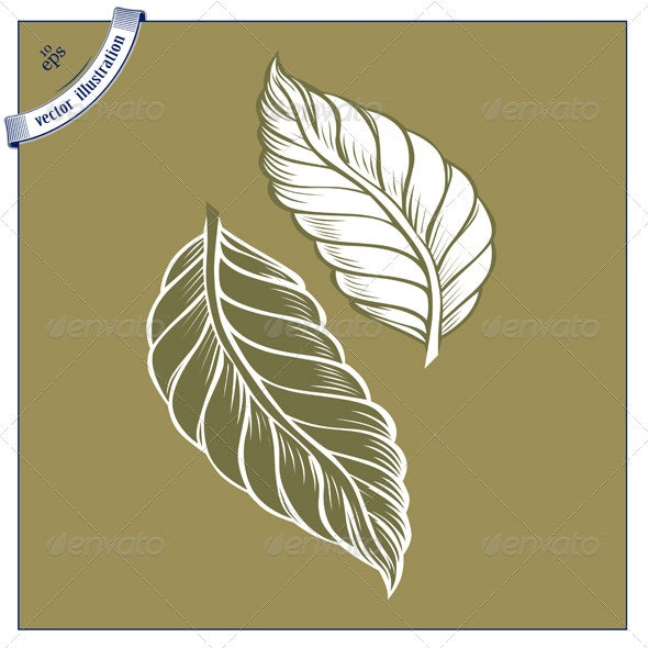 Cacao Leaves Icon - Flowers & Plants Nature