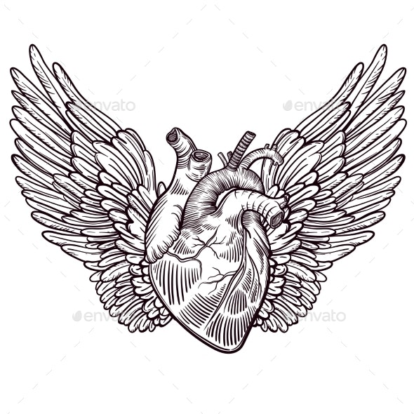 Line Art Illustration of Angel Wings and Heart - Health/Medicine Conceptual