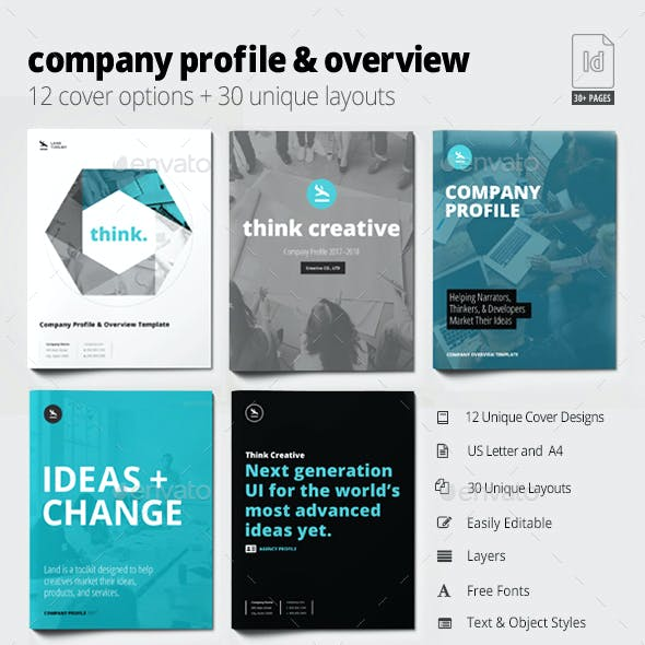 Company Profile & Overview Template