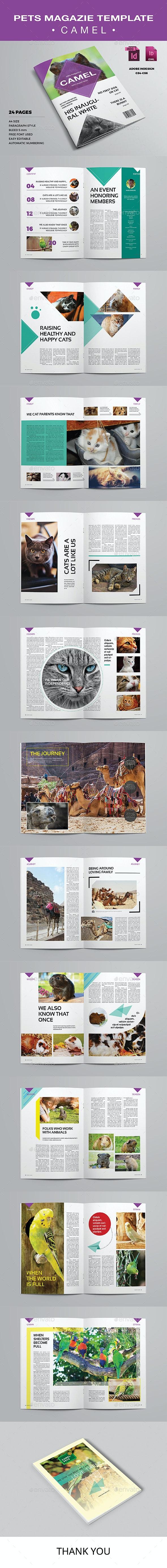 Pets Magazine Template - Camel - Magazines Print Templates