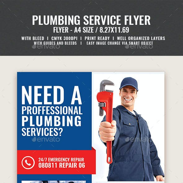 Professional Plumbing Service