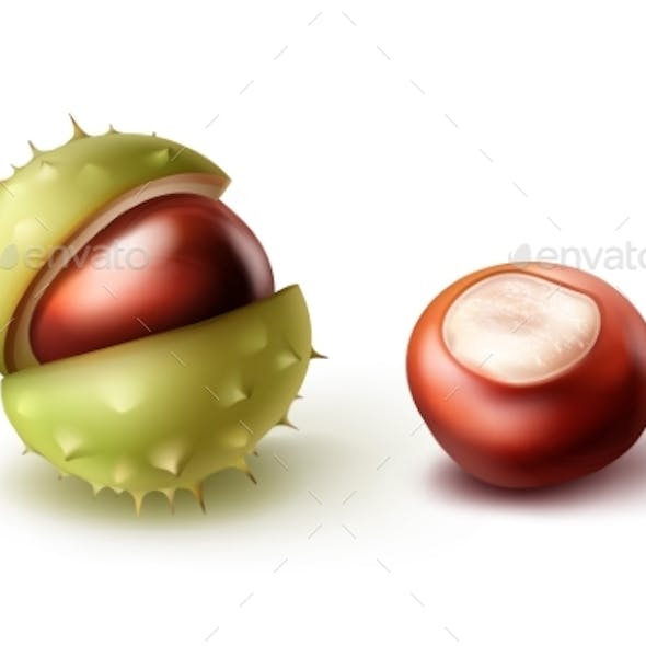 Two Horse Chestnuts