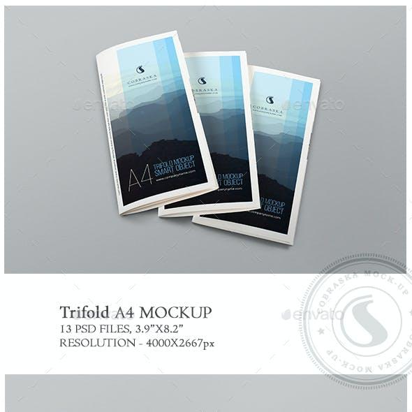 A4 Trifold Mockup