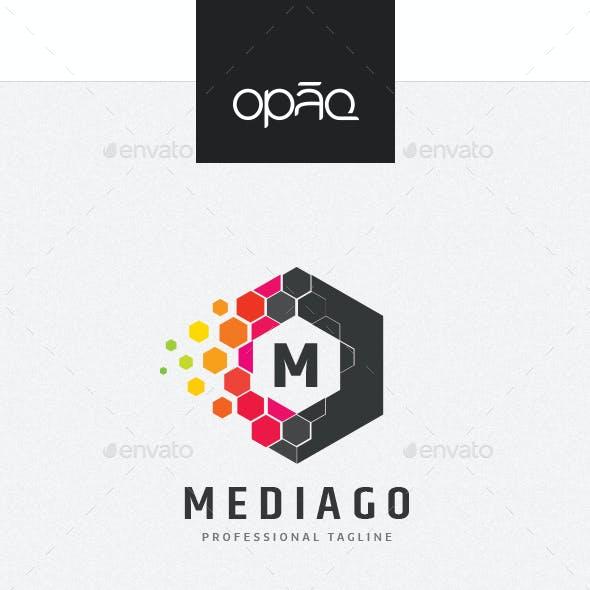 Hexagon Editable Letter Logo