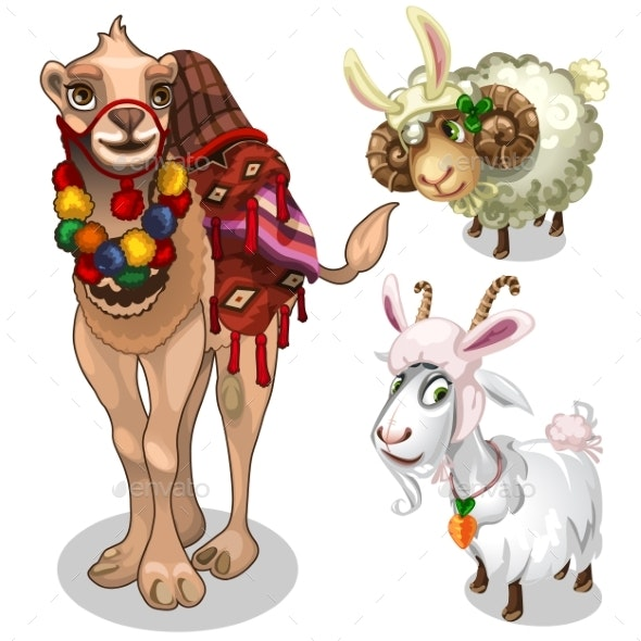 Camel, Sheep and Goat in Childrens Style Costume - Animals Characters