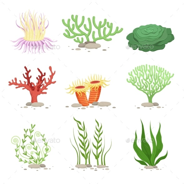 Vector Set of Underwater Plants. Funny - Miscellaneous Vectors