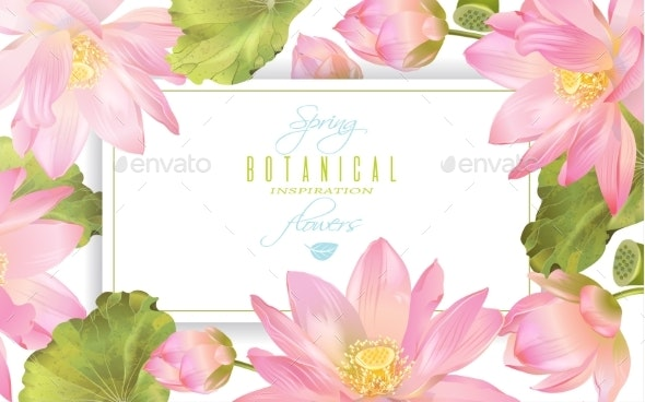 Lotus Flower Banner - Flowers & Plants Nature