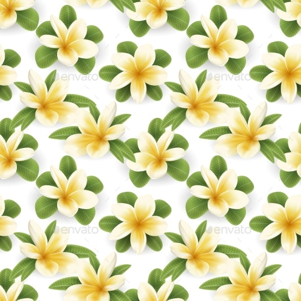 Plumeria Seamless Pattern - Flowers & Plants Nature