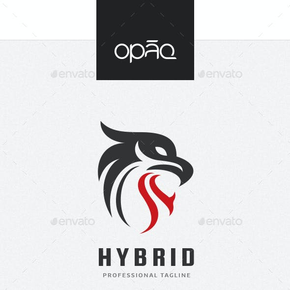 Feline Eagle Hybrid Logo