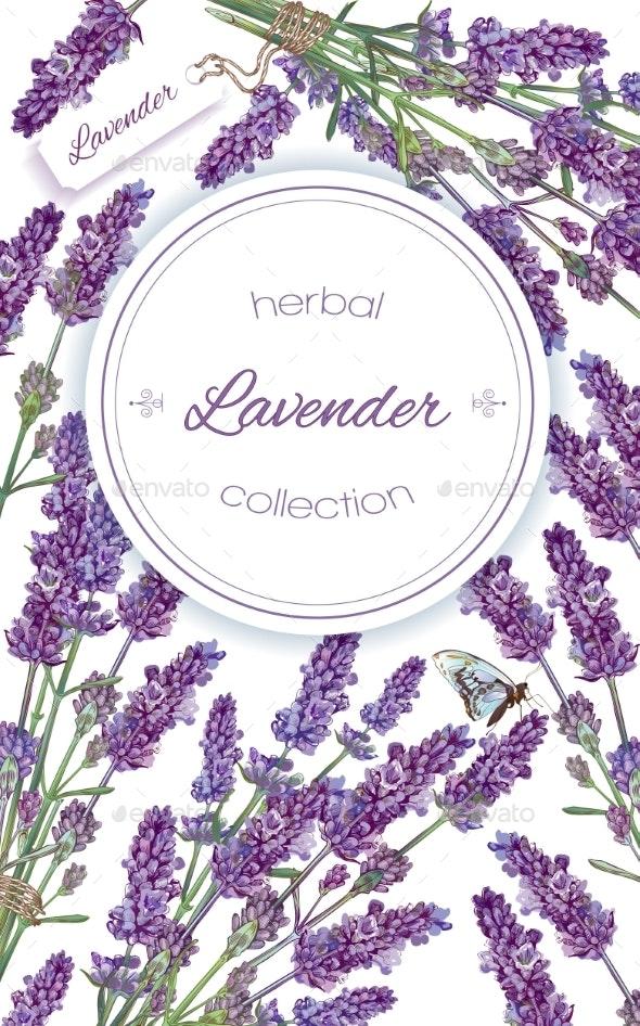 Lavender Flowers Banner By Purple Bird Graphicriver