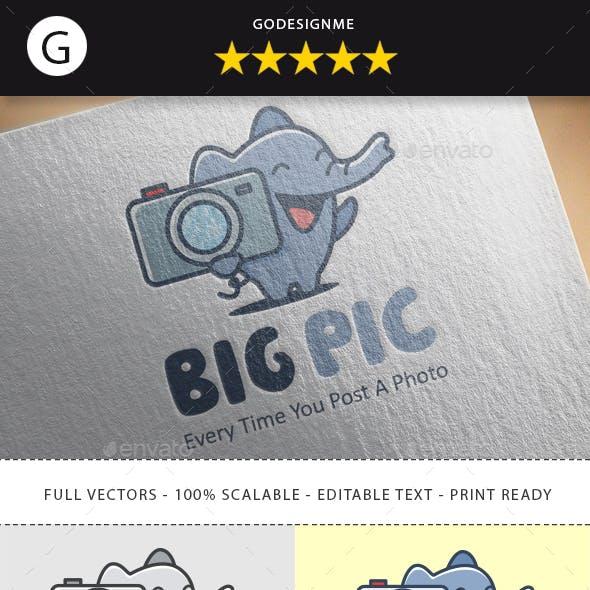 Big Picture Logo Design