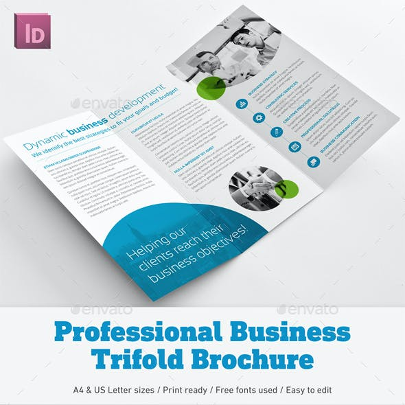 Professional Business Trifold Brochure