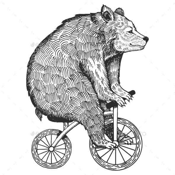 Bear on Bicycle Engraving Style Vector