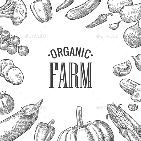 Set Vegetables and Organic Farm Lettering