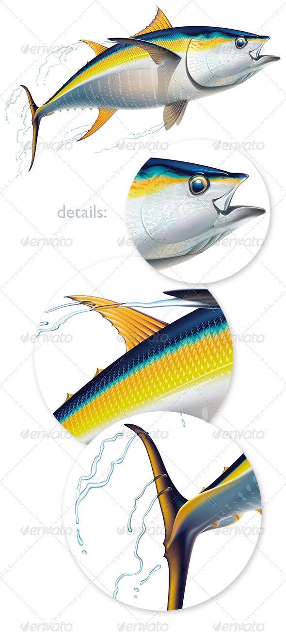 Yellowfin tuna - Animals Characters
