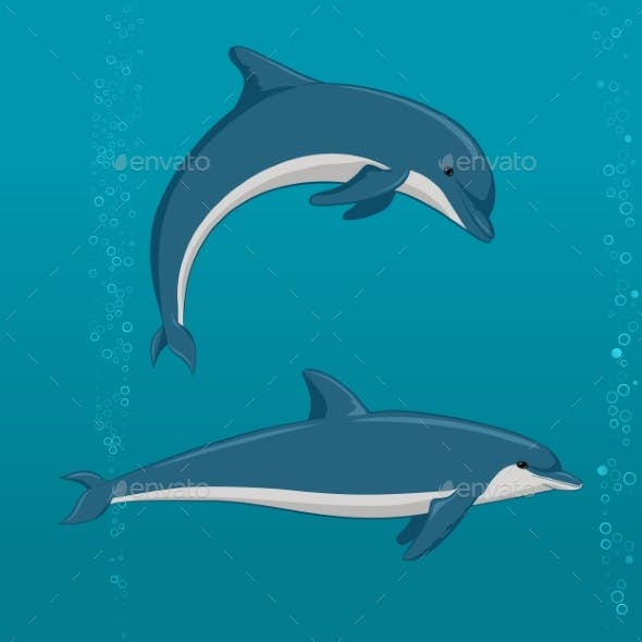 Cartoon Dolphins in Different Poses