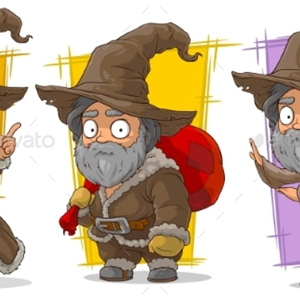Cartoon Wizard with Big Hat Character Vector Set