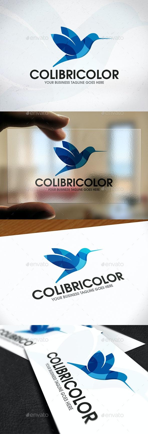 Colibri Bird Logo Design - Animals Logo Templates